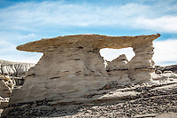 """The Bisti/De-Na-Zin Wilderness is a rolling landscape of badlands which offers some of the most unusual scenery found in the Four Corners Region.  Time and natural elements have etched a fantasy world of strange rock formations made of interbedded sandstone, shale, mudstone, coal, and silt.  The weathering of the sandstone forms hoodoos - weathered rock in the form of pinnacles, spires, cap rocks, and other unusual forms.  Fossils occur in this sedimentary landform.  Translated from the Navajo language, Bisti (Bis-tie) means """"a large area of shale hills.""""  De-Na-Zin (Deh-nah-zin) takes its name from the Navajo words for """"cranes."""""""