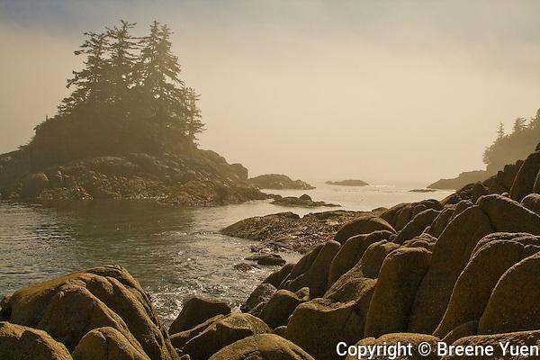 Hakai Beach View, British Columbia, September 2007