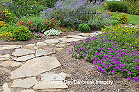 63821-19417 Flower garden with path and fence. Homestead Purple Verbena, yellow lantana, Russian Sage, calibrachoa IL