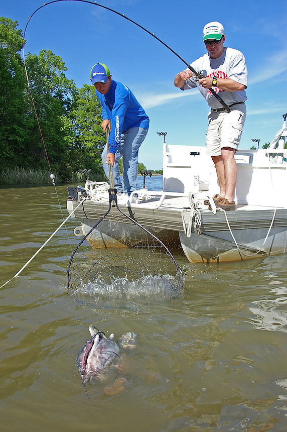 Anglers trying to land trophy blue catfish on Lake Moultrie, one of the Santee-Cooper lakes in South Carolina