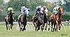Hertzalot winning at Delaware Park on 7/23/14