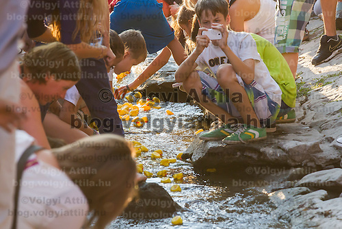 Boy takes a photo of a thousand rubber ducks float on a creek during a charity race of the Rotary Club in Szentendre (about 20 km North of the capital city Budapest), Hungary on August 31, 2013. ATTILA VOLGYI