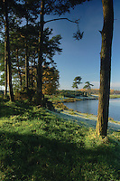 Knapps Loch in winter near Kilmacolm, Inverclyde<br /> <br /> Copyright www.scottishhorizons.co.uk/Keith Fergus 2011 All Rights Reserved