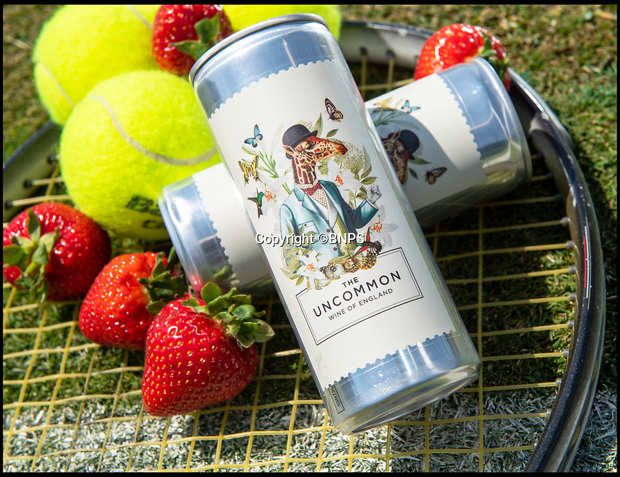 BNPS.co.uk (01202 558833)Pic: PhilYeomans/BNPS<br /> <br /> Perfect for Wimbledon - Canned bubbly!<br /> <br /> Britain's first sparkling wine in a can that is aimed at reducing the billion litres of bubbly thrown away each year has been produced - in Peckham.<br /> <br /> But the new invention is not a Del Boy-type scam but the brainchild of two entrepreneurs who have already struck a deal to sell the cans in posh Selfridges. <br /> <br /> In a move that will make some wine connoisseurs turn their noses up, the English bubbly is now available to buy in 250ml aluminium cans at £5 a pop.<br /> <br /> The canned fizz is targeted at consumers who want a large glass of sparkling wine without having to open a whole bottle of Champagne or prosecco.