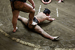 Tokyo, February 5 2015 - Training at Otake stable in the Taito area. Older wrestlers force young low-ranking ones to improve their suppleness.