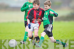 St Bernard's Jack Sheehan and Fenit Samphires Cian Donnellan challenge for the ball at Fenit on Saturday.