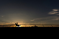 October 05 2018 : Horses train at Keeneland Racecourse on October 05, 2018 in Lexington, Kentucky. Evers/ESW/CSM
