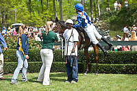 21 April 2012:  El Season and Danielle Hodsdon win the Sport of Kings Maiden Hurdle at Middleburg Spring Races at Glenwood Park in Middleburg, Va. El Season is owned by William Pape and trained by Jonathan Sheppard.   Susan M. Carter/Eclipse Sportswire