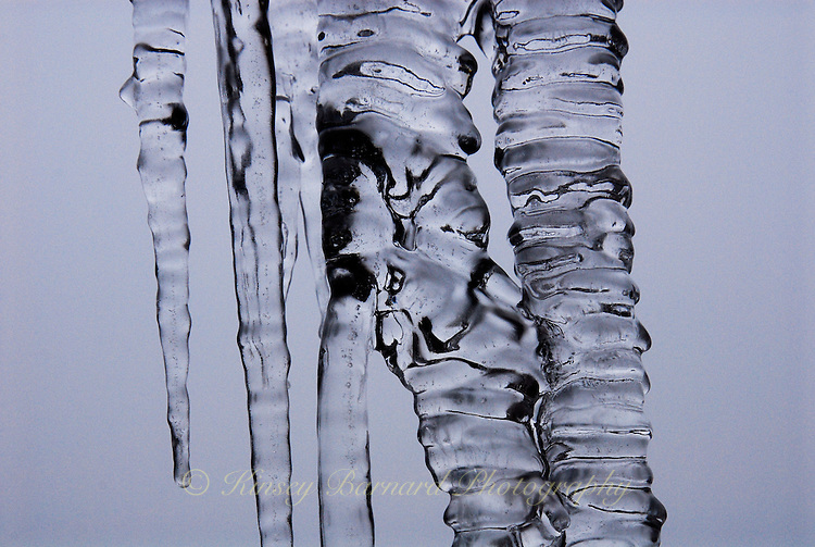 &quot;THE KISS&quot;<br />