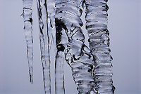 """THE KISS""<br />