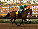December 1 2018: #6 Raging Bull, ridden by Joel Rosario, in the post parade before the Hollywood Derby (Grade 1) on December 1, 2018, at Del Mar Thoroughbred Club in Del Mar, CA.