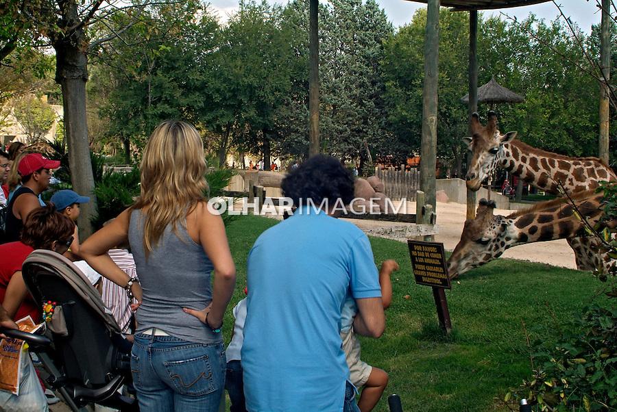 Animais no Zoológico de Madrid. Espanha. 2008. Foto de Catherine Krulik.