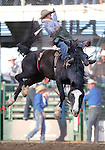 Will Lowe competes in the bareback bronc riding event at the Reno Rodeo in Reno, Nev. on Friday, June 19, 2015.<br /> Photo by Cathleen Allison/Nevada Photo Source