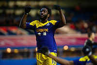Saturday 25 January 2014<br /> Pictured: Wilfried Bony of Swansea Celebrates with team mates<br /> Re: Birmingham City v Swansea City FA Cup fourth round match at St. Andrew's Birimingham