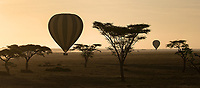One of the highlights of this trip was a hot air balloon ride over the Serengeti.