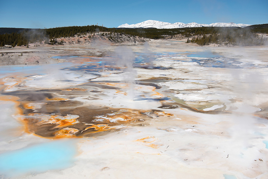 Steam rises from the geyser and hot pots at Porcelain  Springs in Norris Geyser Basin, Yellowstone National Park.