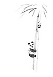 Cute big panda and a baby panda climbing bamboo trees, artistic oriental style sumi-e painting illustration isolated design black ink on white background