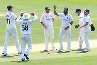 Jeetan Patel of Warwickshire is congratulated by his team mates after taking the wicket of Tom Westley during Essex CCC vs Warwickshire CCC, Specsavers County Championship Division 1 Cricket at The Cloudfm County Ground on 19th June 2017