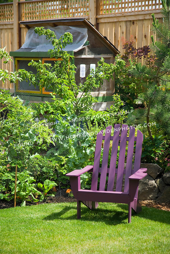 A bright purple Adirondack chair provides a cheerful burst of color in this urban back yard.