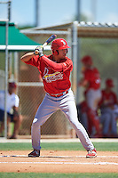 GCL Cardinals center fielder Dylan Carlson (29) at bat during the second game of a doubleheader against the GCL Marlins on August 13, 2016 at Roger Dean Complex in Jupiter, Florida.  GCL Cardinals defeated GCL Marlins 2-0.  (Mike Janes/Four Seam Images)