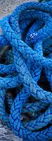 Europe/France/Bretagne/29/Finistère/Roscoff : Le port; détail des bateaux de pêche (caseyeur)