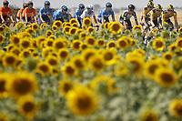 Vuelta Burgos Stage 4 - 31 July 2020