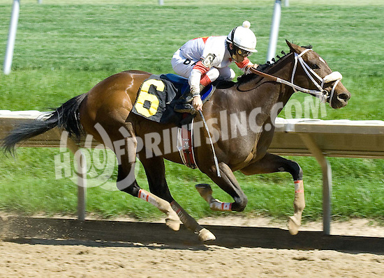 Lookin Left winning at Delaware Park on 5/8/10