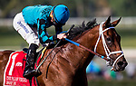 ARCADIA, CA - FEBRUARY 03: Roy H #1, ridden by Kent Desormeaux crosses the wire first in the Palos Verdes Stakes at Santa Anita Park on February 3, 2018 in Arcadia, California. (Photo by Alex Evers/Eclipse Sportswire/Getty Images)