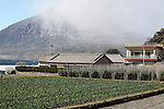 Sakurajima Volcano, Japan. Ongoing activity shrouds the surrounding landscape in ash. Agricultural land benefits from this as the ash fertilizes the soil.