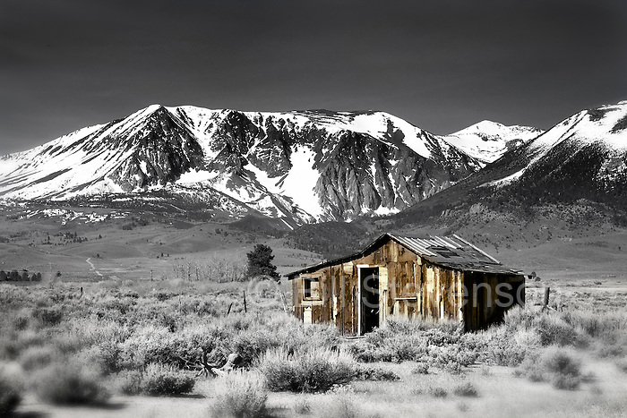 An image of an old cabin with snow covered mountains in the Sierra Mountains of California