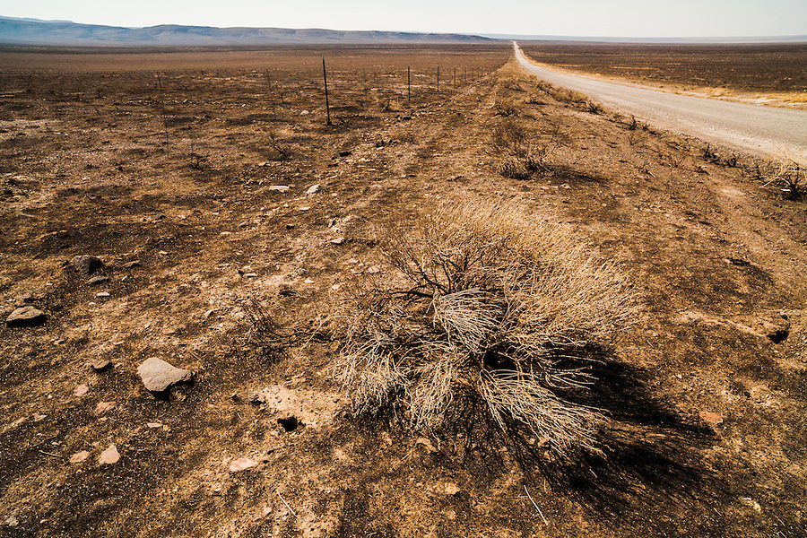 Whitehorse Ranch Road is a long gravel road leading into the heart of Southeast Oregon, seen here after a major wildfire has obliterated the vegetation in all directions.