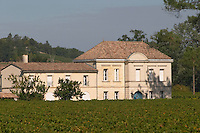 Vineyard. XXXX Saint Emilion, Bordeaux, France