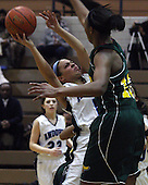Farmington Hills Harrison at Bloomfield Hills Andover, Girls Varsity Basketball, 2/19/13