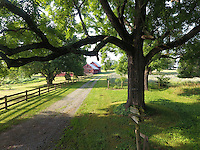 Historical Bracketts Farm located in Louisa, VA. Photo/Andrew Shurtleff