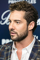 David Bisbal attend the 40 Principales Awards at Barclaycard Center in Madrid, Spain. December 12, 2014. (ALTERPHOTOS/Carlos Dafonte) /NortePhoto