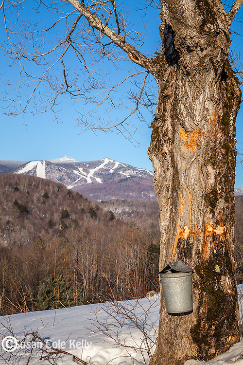 Late winter view of Killington Mountain from Bridgewater, VT, USA