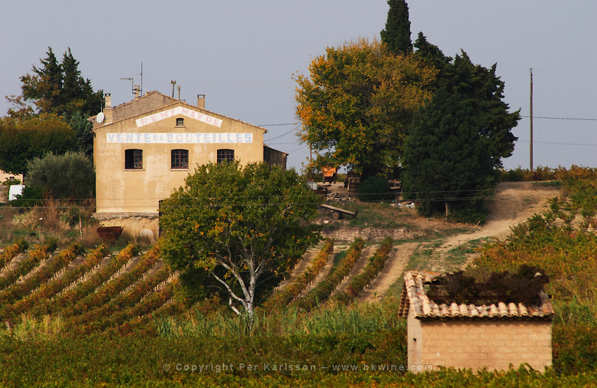 Neighbouring Remy Mayre winery Domaine la Monardiere Monardière, Vacqueyras, Vaucluse, Provence, France, Europe