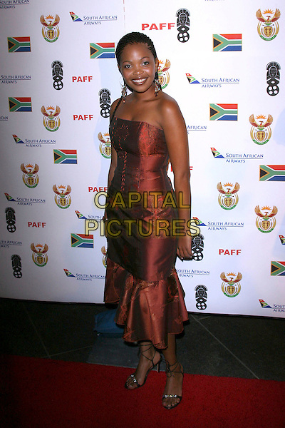 TERRY PHETO .Pan African Film and Arts Festival Opening Night Gala - Arrivals held at Director's Guild of America.  .February 10th, 2006.Photo: Zach Lipp/AdMedia/Capital Pictures.Ref: ZL/ADM.full length red dress.www.capitalpictures.com.sales@capitalpictures.com.© Capital Pictures.