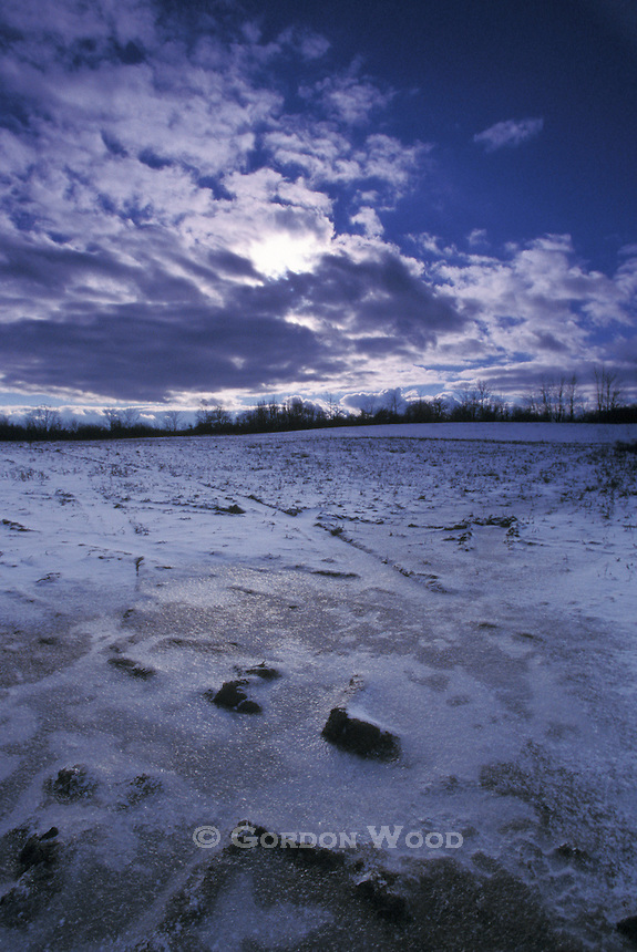 Ice Covered Field Below Sky with Stratocumulus Clouds Obscuring Sun