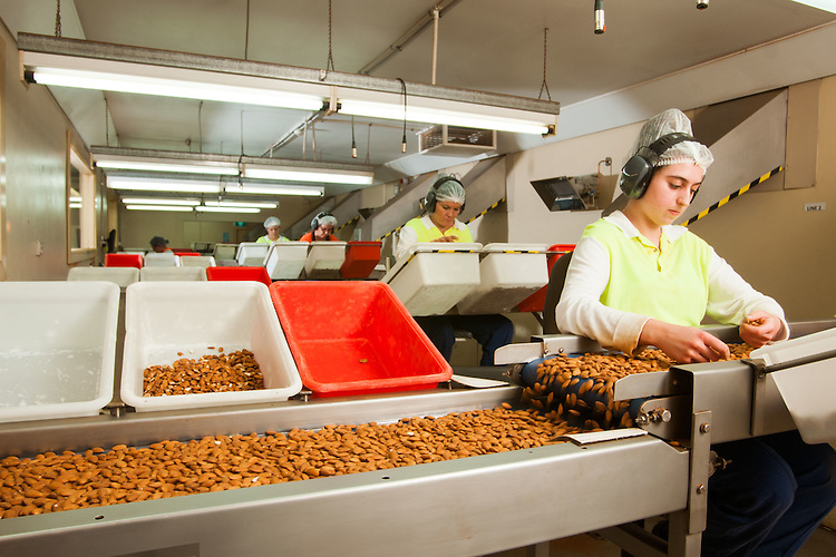 Almond Co