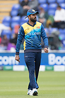 Lahiru Thrimanne (Sri Lanka) during Afghanistan vs Sri Lanka, ICC World Cup Cricket at Sophia Gardens Cardiff on 4th June 2019