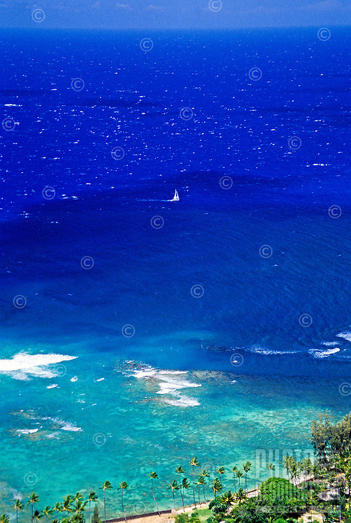 A lone sailboat takes center stage in a vast sea of blues off Waikiki Beach. Great aerial shot of the Waikiki shoreline framed by miniature coconut palms.