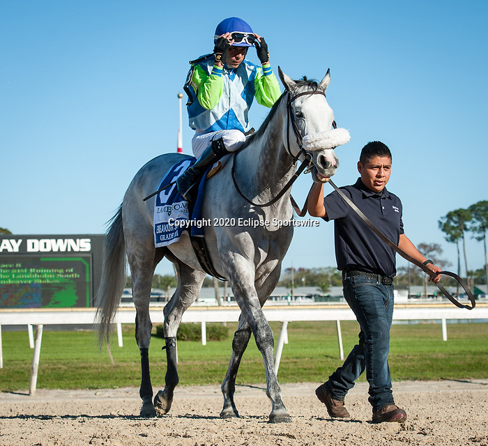 February 8, 2020: Jehozacat, ridden by Daniel Centeno, wins the 2020 running of the Endeavour Stakes at Tampa Bay Downs in Oldsmar, FL. Sophie Shore/ESW/CSM