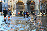 Tourists in front of birds walk with boots and plastic bags to protect their shoes on flooded St Mark's square during an acqua alta (high-water). The Acqua Alta, a convergence of high tides and a strong sirocco, reached 125 centimetres in Venice, on November 20, 2013.  <br /> <br /> &copy; Pierre Teyssot
