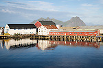 Fish processing buildings at Svolvaer, Lofoten Islands, Nordland, Norway