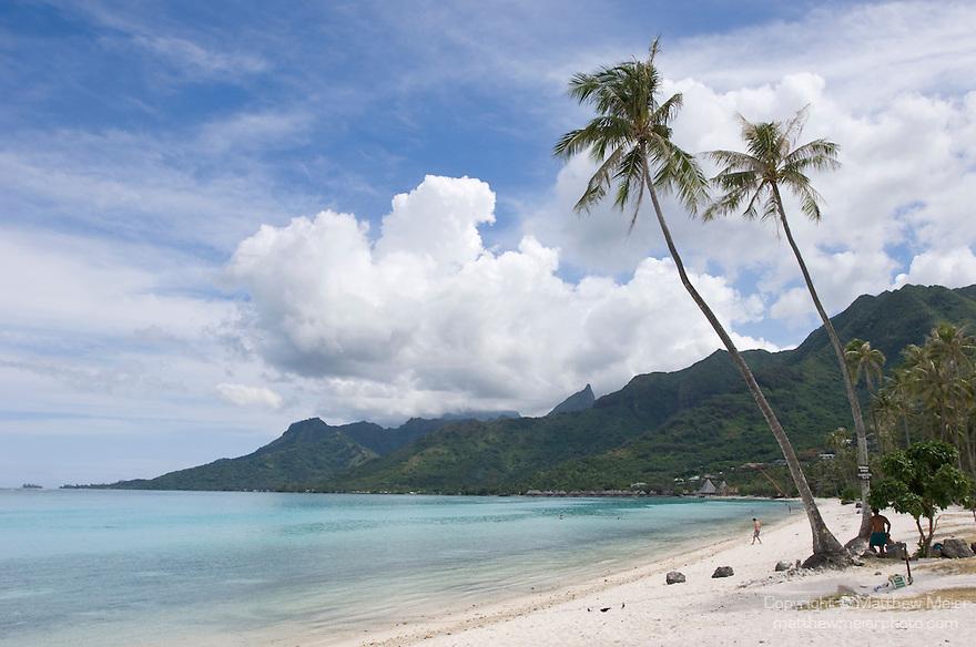 Temae Beach, Moorea, French Polynesia; two palm trees near the water's edge at Temae Beach , Copyright © Matthew Meier, matthewmeierphoto.com All Rights Reserved