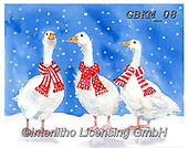 Kate, CHRISTMAS ANIMALS, WEIHNACHTEN TIERE, NAVIDAD ANIMALES, paintings+++++Geese with scarves,GBKM08,#xa# ,goose,geese,