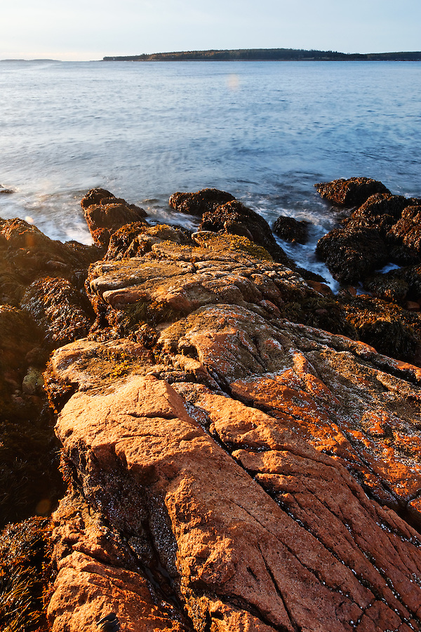 Pink granite rocky shoreline, Bass Harbor Head, Acadia National Park, Bass Harbor, Tremont, Maine, USA