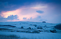 08/12/14<br /> <br /> Dawn breaks near Sparrowpit.<br /> <br /> After overnight snowfall in Debyshire dawn reveals stunning snowscapes across the Peak District.<br /> <br /> ***ANY UK EDITORIAL PRINT USE WILL ATTRACT A MINIMUM FEE OF &pound;130. THIS IS STRICTLY A MINIMUM. USUAL SPACE-RATES WILL APPLY TO IMAGES THAT WOULD NORMALLY ATTRACT A HIGHER FEE . PRICE FOR WEB USE WILL BE NEGOTIATED SEPARATELY***<br /> <br /> <br /> All Rights Reserved - F Stop Press. www.fstoppress.com. Tel: +44 (0)1335 300098