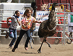 Mariah Haas, 11, and her sister Abby, 14, at rear, chase their emus during a race Friday, Sept. 10, 2010, in the 51st Annual Virginia City International Camel Races in Virginia City, Nev. .Photo by Cathleen Allison